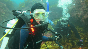 Laura and Jon scuba certification australia